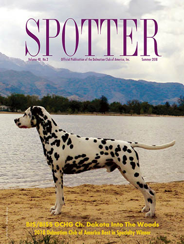 Spotter Online Magazine: Winter 2018 Issue