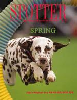 Spotter Spring 2013